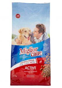 Miglior Cane Active
