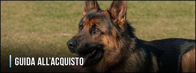 guida-all-acquisto-antiparassitari-per-cani