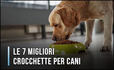 migliori-crocchette-(cibi)-per-cani