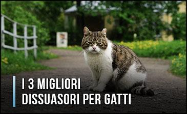 Qual è il Miglior Dissuasore per Gatti? – Opinioni, Recensioni, Prezzi (Gennaio 2020)