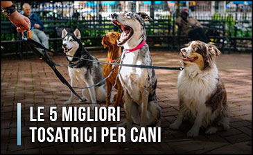Qual è la Migliore Tosatrice per Cani? - Anche Professionali, Opinioni, Recensioni (Gennaio 2020)